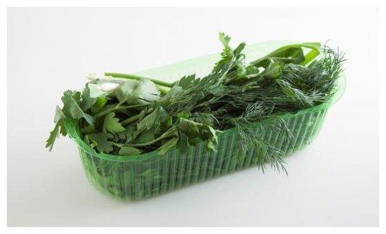 ВкусВилл Ассорти из зелени (лук, укроп, петрушка), контейнер пластиковый (Россия)