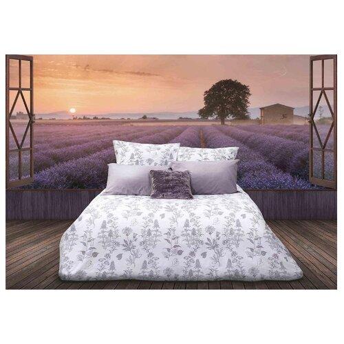 Постельное белье 1.5-спальное Sova & Javoronok Французский шарм 50х70 см, перкаль белый/серый постельное белье 1 5 спальное sova