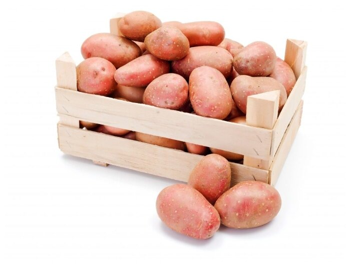 Картофель красный, ящик фанерный (Россия)