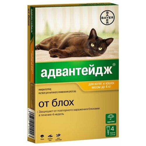 Адвантейдж (Bayer) Капли от блох для котят и кошек до 4 кг капли для кошек inspector от 4 8кг капли от внеш и внутр паразитов 1 пипетка