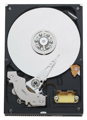 Жесткий диск Western Digital WD Blue 40 GB (WD400BB)
