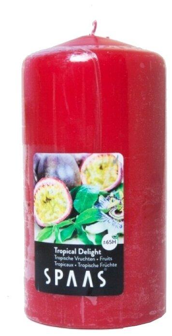 Свеча Spaas Tropical Delight арома столбик — купить по выгодной цене на Яндекс.Маркете