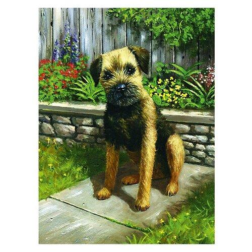Купить Royal & Langnickel Картина по номерам Щенок в саду 22х29 см (PJS 61), Картины по номерам и контурам