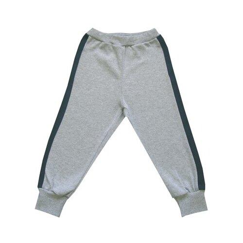 Брюки ПАНДА дети размер 92, серый/синийБрюки и шорты<br>