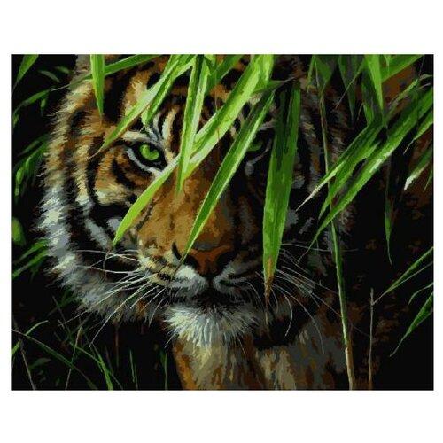 Купить Paintboy Картина по номерам Взгляд хищника 40х50 см (GX7418), Картины по номерам и контурам