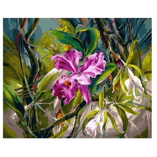 Molly Картина по номерам Волшебный ирис 40х50 см (KH0202)Картины по номерам и контурам<br>