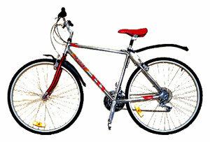 Горный (MTB) велосипед REGGY RG27B3800