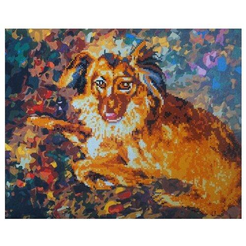 Купить Color Kit Набор алмазной вышивки-раскраска Породистый пес (RA004) 50х40 см, Алмазная вышивка