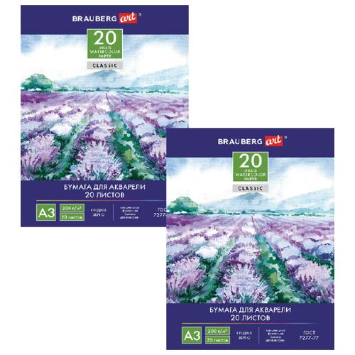 Фото - Папка для акварели BRAUBERG Долина 122908-2, 42 х 29.7 см (A3), 200 г/м², 20 л (2шт.) папка для акварели brauberg скорлупа a3 10 листов
