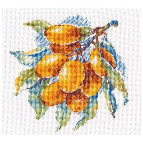 Купить Овен Набор для вышивания Янтарная ягода 15 x 15 см (1091), Наборы для вышивания