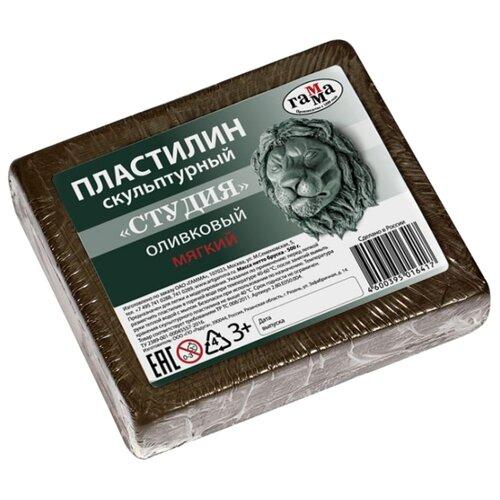 Купить Пластилин ГАММА Студия мягкий оливковый 500 г (2.80.Е050.004), Пластилин и масса для лепки