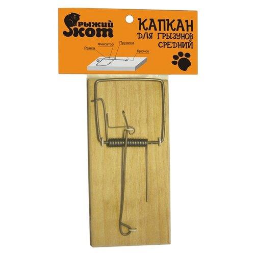 Фото - Мышеловка Рыжий кот Капкан для грызунов средний коробка рыжий кот 33х20х13см 8 5л д хранения обуви пластик с крышкой