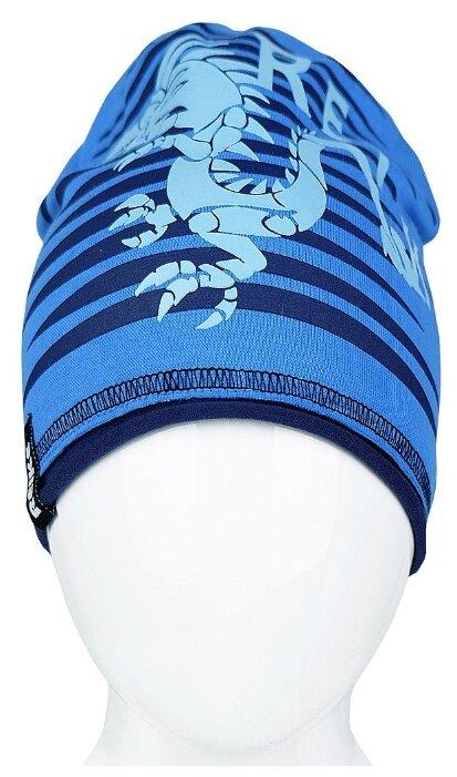 Шапочка Reike Драконы синяя р.50 RKNSS 17-DRG1