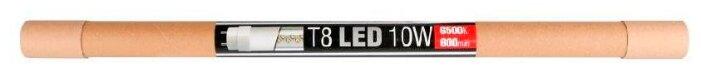 Лампа светодиодная REV 32391 4, G13, T8, 10Вт