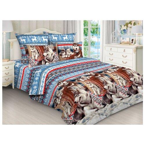 Постельное белье 2-спальное Toontex 5816 бязь синий/коричневый/красныйКомплекты<br>