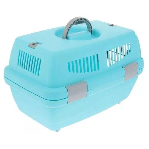 Клиппер-переноска для кошек и собак Пижон Неон 48х32х30 см голубой