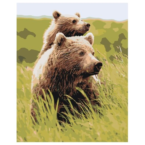 Купить Картина по номерам, 100 x 125, Z-AB378, Живопись по номерам , набор для раскрашивания, раскраска, Картины по номерам и контурам