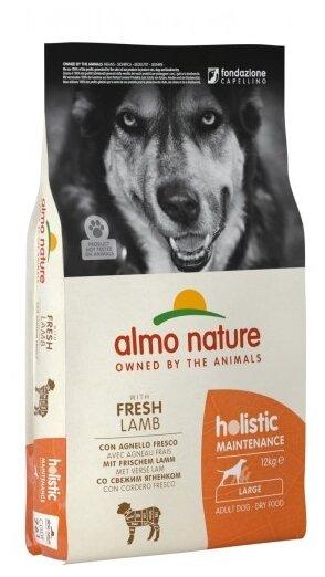 Корм для собак Almo Nature Holistic ягненок 12 кг (для крупных пород)