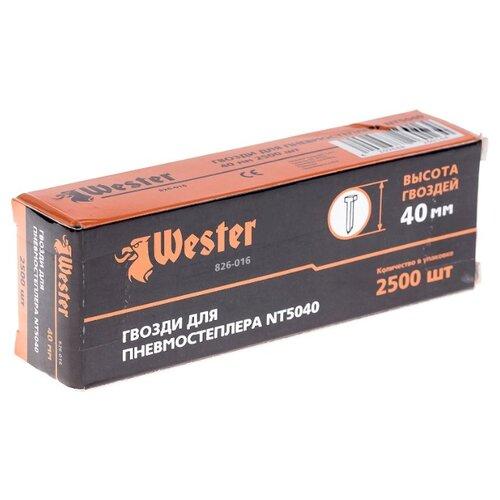 Гвозди Wester 826-016 для пистолета, 40 мм