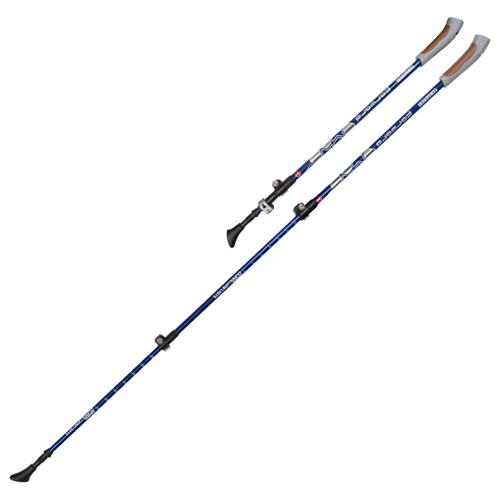 Палки для скандинавской ходьбы 2 шт. Yamaguchi Forward синий