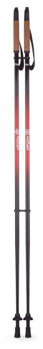 Палка для скандинавской ходьбы 2 шт. Армед STC036 (120см)