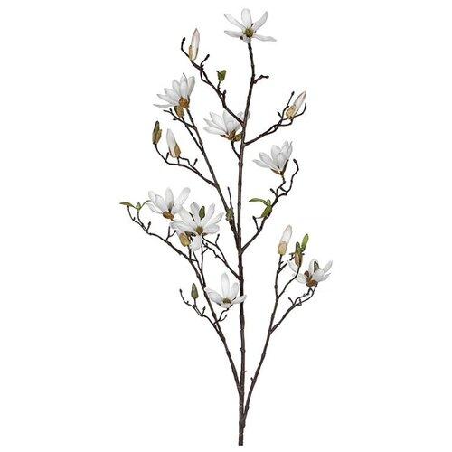 ВЕТКА МАГНОЛИИ, белая, 110 см, Edelman 1009098