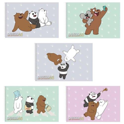 Купить Альбом для рисования Hatber Вся правда о медведях 30 х 20.5 см, 100 г/м², 48 л., Альбомы для рисования