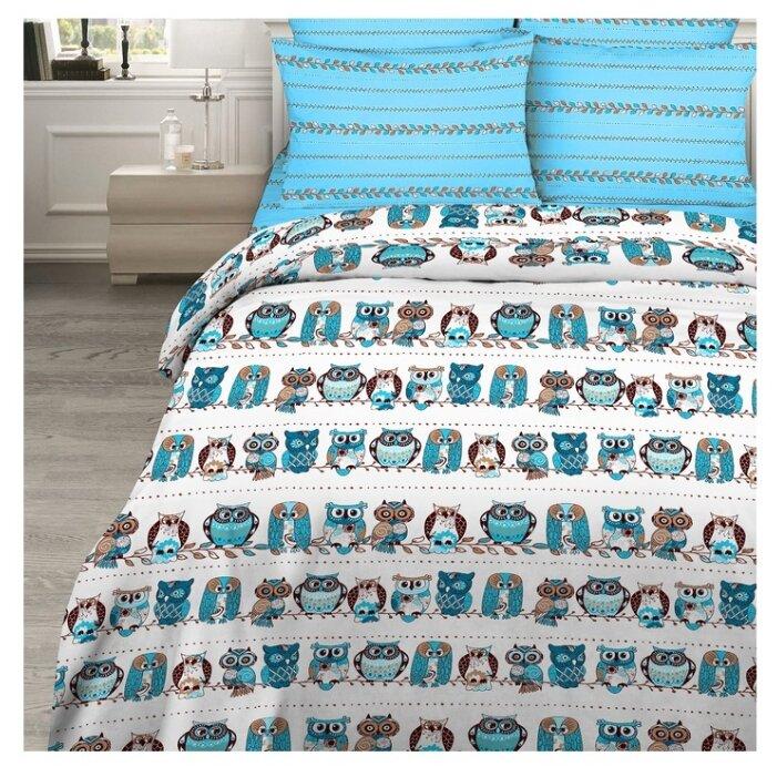 Постельное белье 2-спальное Василиса Совы бязь голубой / белый