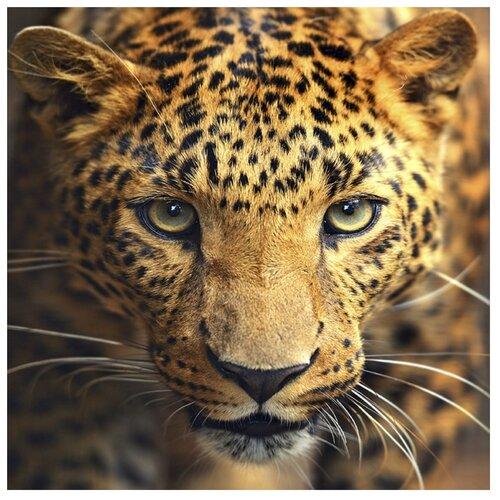 Алмазная живопись Набор алмазной вышивки Портрет леопарда (АЖ-1400) 30x30 смАлмазная вышивка<br>