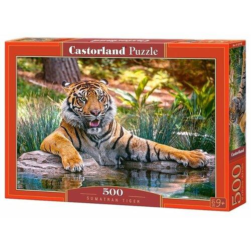 Купить Пазл Castorland Sumatran (B-52745), 500 дет., Пазлы