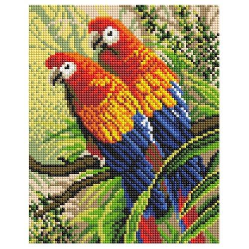 Купить Белоснежка Набор алмазной вышивки Попугаи (416-ST-PS) 20x25 см, Алмазная вышивка