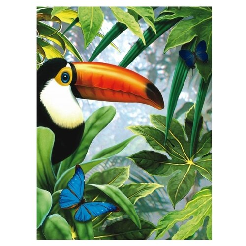 Купить Royal & Langnickel Картина по номерам Тукан 22х29 см (PJS 53), Картины по номерам и контурам