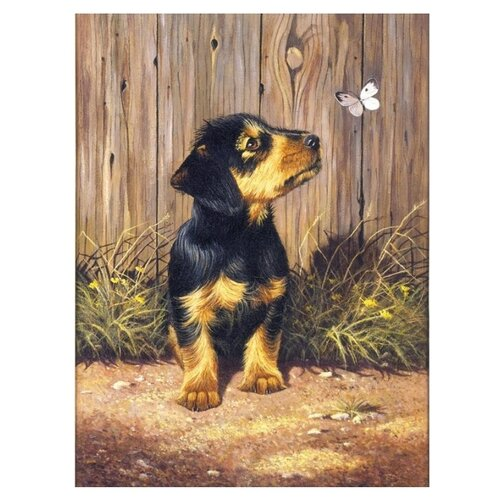 Купить Royal & Langnickel Раскраска по номерам Такса 22х29 см (PJS51), Картины по номерам и контурам