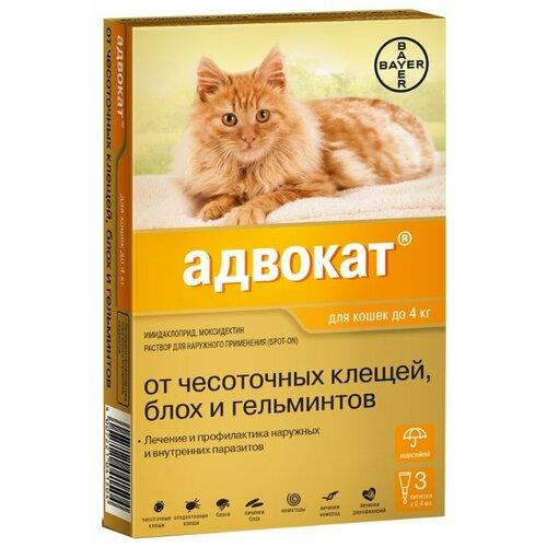 Адвокат (Bayer) Капли от чесоточных клещей, блох и гельминтов для кошек до 4 кг (3 пипетки) relaxivet relaxivet капли spot on успокоительные для кошек и собак 4 пипетки по 0 5 мл