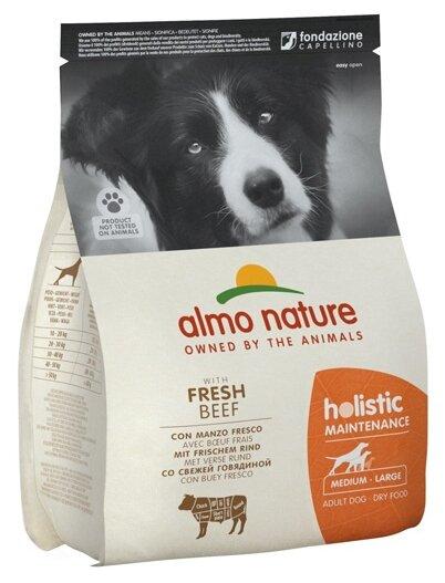 Корм для собак Almo Nature Holistic говядина 2 кг (для средних пород)