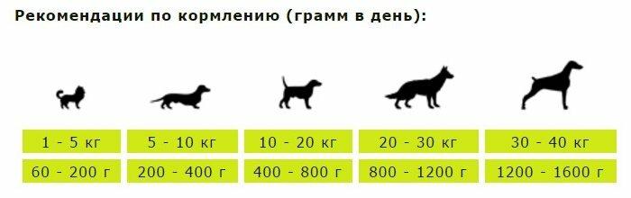 Корм для собак Berkley (0.2 кг) 6 шт. Паштет для собак. #4 Ягненок с рисом