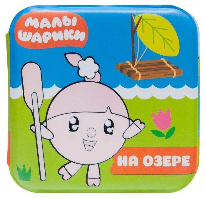 Купить Малышарики Водная раскраска. На озере МС11217 по ...