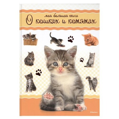 Моя большая книга о кошках и котятах machaon книга интерактивная энциклопедия для школьников machaon