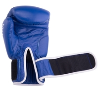 Боксерские перчатки Green hill Gym (BGG-2018) синий 8 oz
