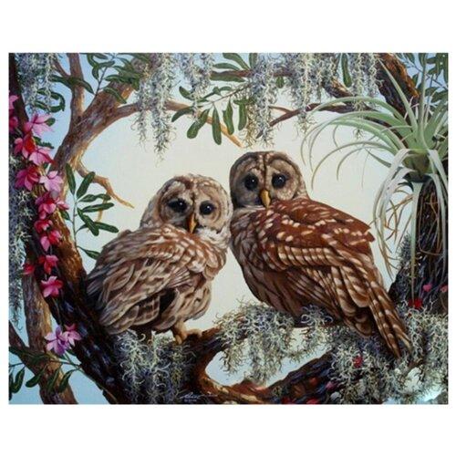 Купить ВанГогВоМне Картина по номерам Совиный лес , 40х50 см (ZX 21598), Картины по номерам и контурам