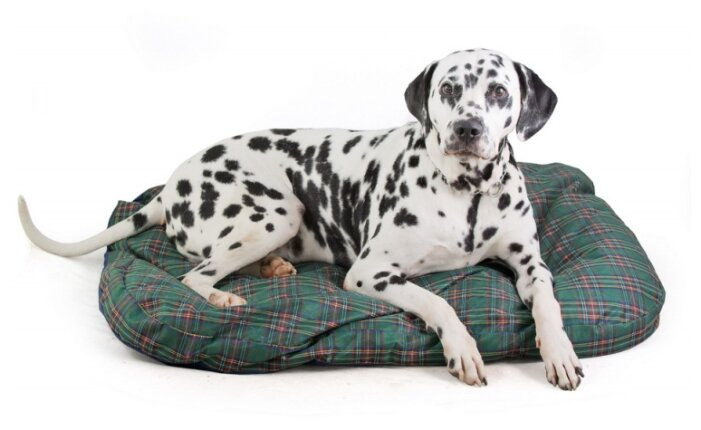 Подушка для собак Titbit с наполнителем из лузги гречихи (003091) 100х70 см