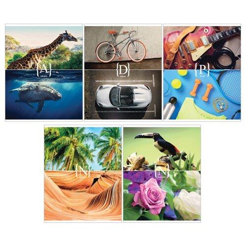 Купить ArtSpace Упаковка тетрадей Стиль. Play Nature Т96к_13715, 5 шт., клетка, 96 л., Тетради