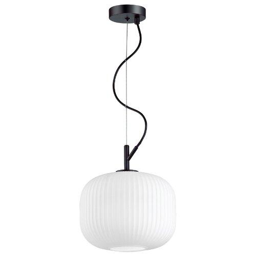 Светильник Odeon light Roofi 4753/1, E27, 60 Вт светильник odeon light pelo 4709 1 e27 60 вт