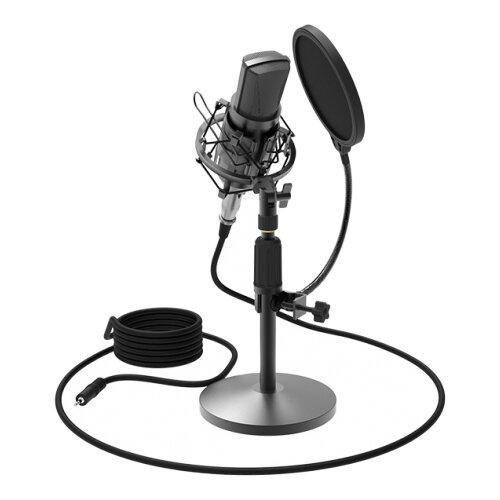 Микрофон Ritmix RDM-175, черный