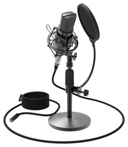 Микрофон Ritmix RDM-175