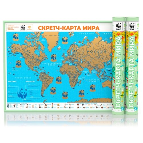 Smart Gift Стираемая карта мира WWF фисташковая А1 59х84см