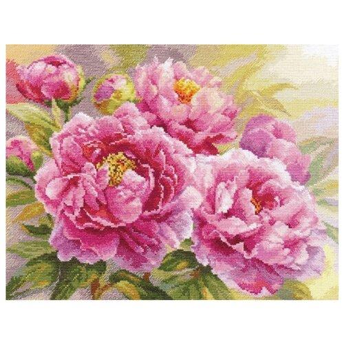 Купить Алиса Набор для вышивания крестиком Пионы 40 х 30 см (2-35), Наборы для вышивания