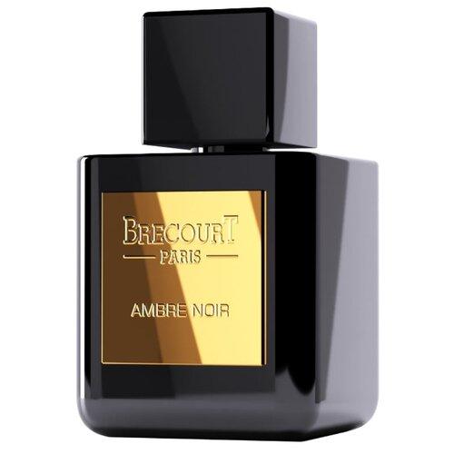Парфюмерная вода Brecourt Ambre Noir, 50 мл