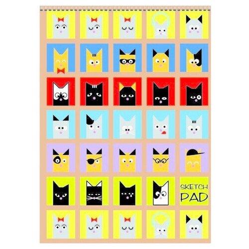 Купить Скетчбук для зарисовок Канц-Эксмо Кошки в окошках 29.7 х 21 см (A4), 120 г/м², 40 л., Альбомы для рисования
