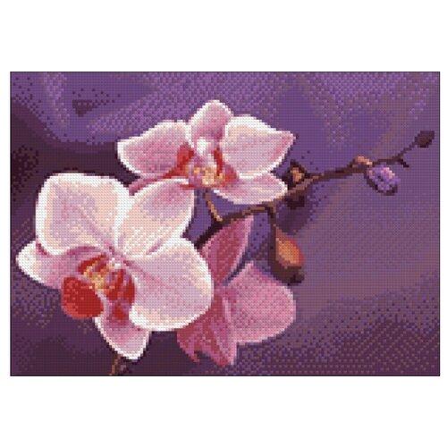 Гранни Набор алмазной вышивки Ветвь орхидеи (ag4634) 38x27 смАлмазная вышивка<br>